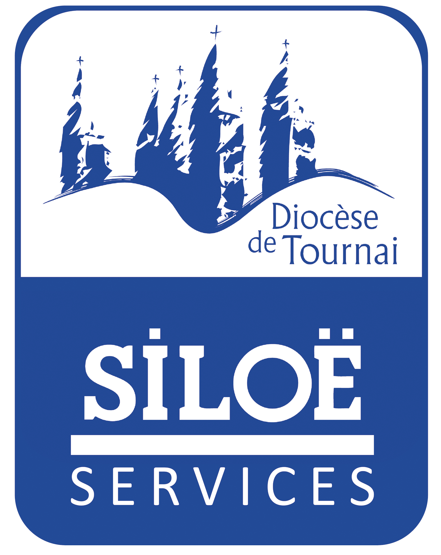 logo siloe services web transparent